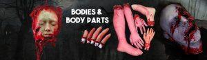 Bodies-Body-Parts
