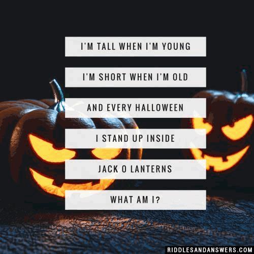 Halloween Riddles, Halloween Jokes