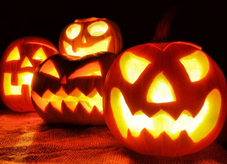 Halloween Pumpkin Patch Near Me 3